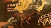 木下大サーカス➡広島県立美術館➡NTTクレドホールという順路で 広島のイベントを堪能しました。 木下大サーカスは、9/25(日)までマリーナホップのすぐ近くで公演しています。 http://www.kinoshita-circus.co.jp/htmls/sche/sche-01.htm 福山でフレスタ商品券の引換で入場券を入手し、当日の指定席を確保するため ...