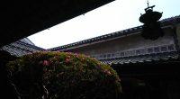 年に一度、4日間だけ無料公開される「サツキ」があると知り、 倉敷美観地区にある「はしまや呉服店」に行って来ました。 以下は、はしまや呉服店のサツキ展を紹介されているサイトです。(今日まで!) http://www.sanyonews.jp/town/event/event_detail/11268/ 築150年の建物、樹齢250年のサツキ、異空間にいるようで ...