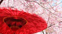 この辺りでも桜がちらほら咲き始め、お出掛けモードが高まってきてますね。 昨日、笠岡にある竹喬美術館「都路華香-装飾表現の現代化-」を観ました。 チラシで見ていたときは、ポスターっぽい絵だと思っていたのですが、 実物を観ると、アニメーションのように動き出してきそうで、 人物画からは、「ひそひそ話してるよ、ほらほらっ!!」とか言いながら、 どんどん近づいてくるよ ...
