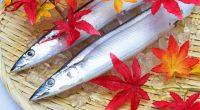 やっと、日中も涼しくなってきましたね。 昨年は、秋刀魚が小さくて、あまり購入する気にならなかったのですが、 今年は、美味しそうに成長しているように思います。 秋刀魚を塩焼きにして大根おろしとカボスなどをかけていただくと、 「あ~、秋だねぇ~~っ!」とつい声が。。。 秋刀魚には、身体と脳に良いと言われる栄養素、EPAとDHAが多く含まれ、 血栓の予防、動脈硬化 ...